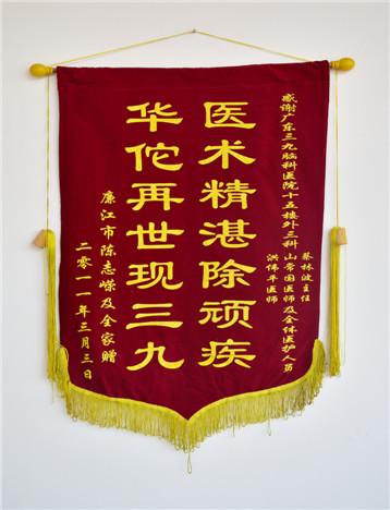 患者陈志嵘,男,16岁,因生殖细胞瘤于2008年12月入院,经治疗,家属对疗效满意,特送来锦旗表示感激。