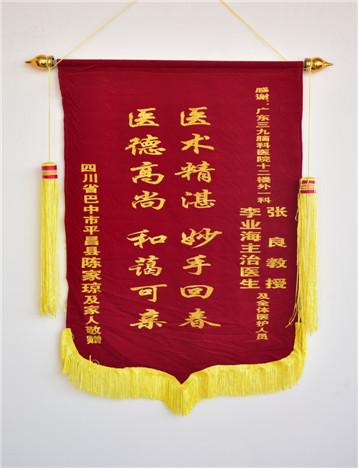 患者(陈家琼)入院治疗后,家属对疗效满意,特送来锦旗表示感激。