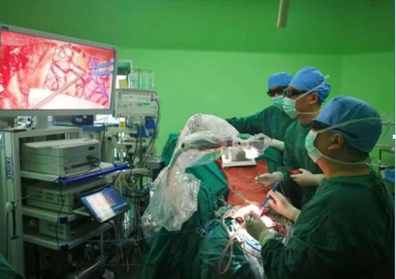 Have1高清视频辅助的Vitom 2/3D外视镜手术系统